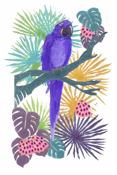 Hyacyth Macaw